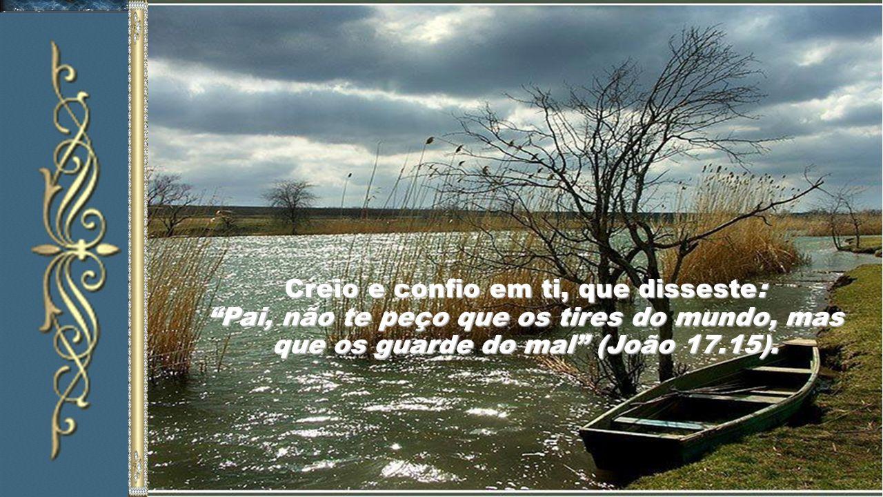 Creio e confio em ti, que disseste: Pai, não te peço que os tires do mundo, mas que os guarde do mal (João 17.15).