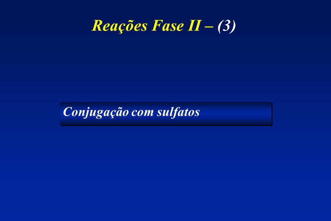 Reações Fase II – (3) Conjugação com sulfatos