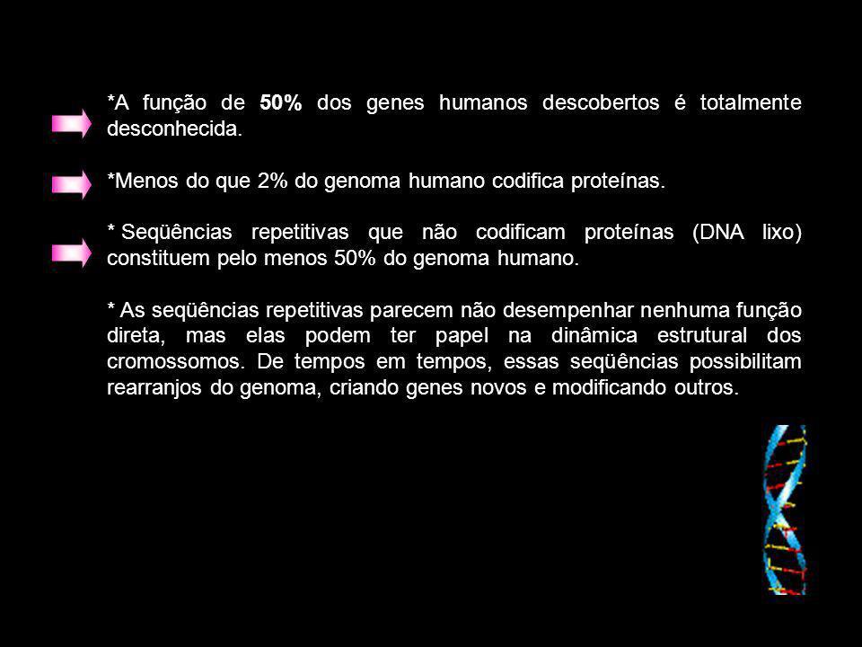 A função de 50% dos genes humanos descobertos é totalmente desconhecida.