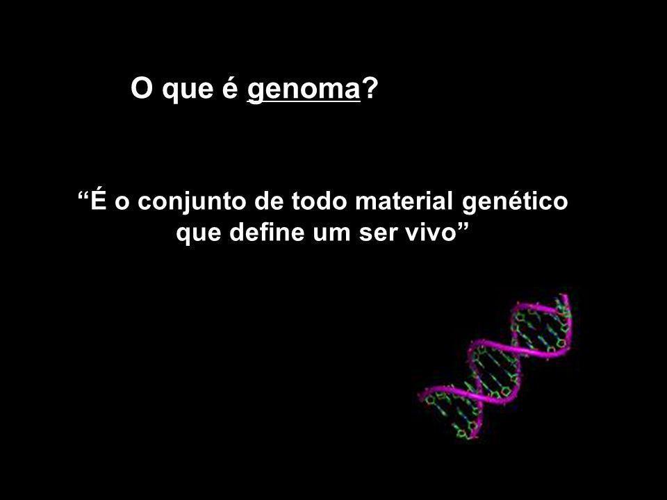 É o conjunto de todo material genético que define um ser vivo