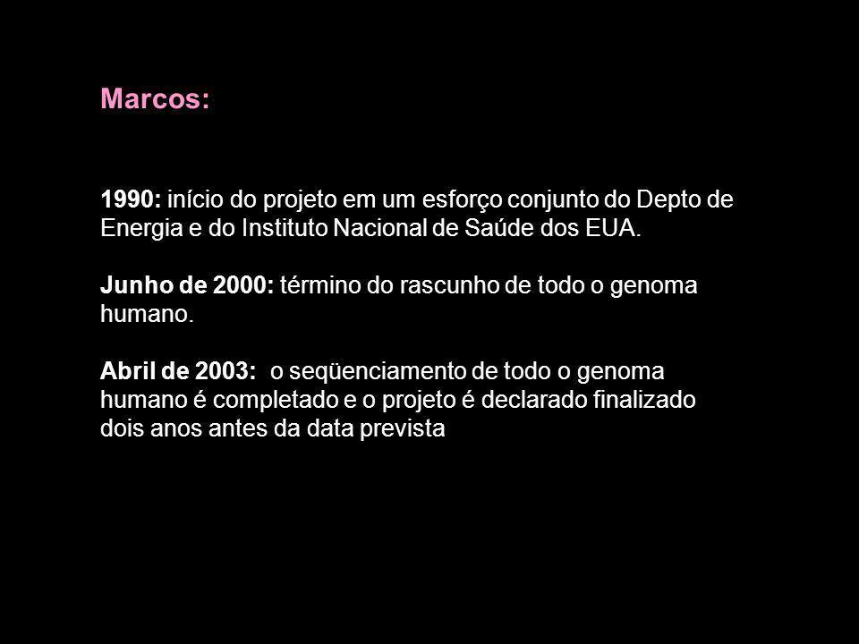 Marcos:1990: início do projeto em um esforço conjunto do Depto de Energia e do Instituto Nacional de Saúde dos EUA.
