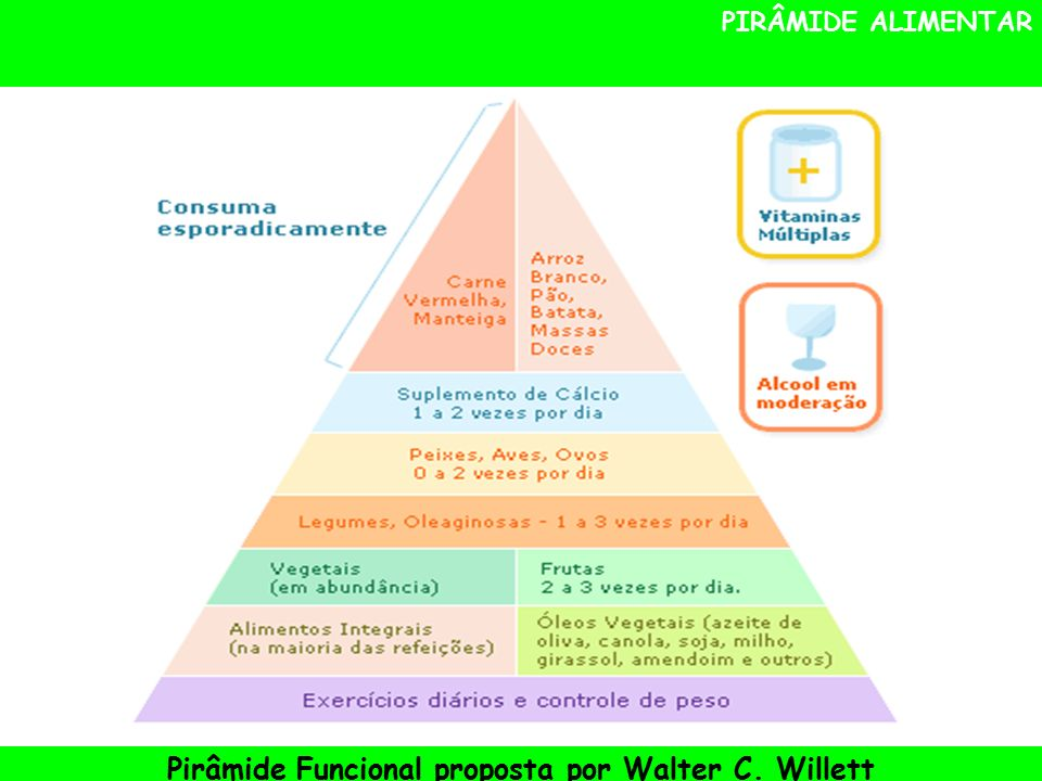 Pirâmide Funcional proposta por Walter C. Willett