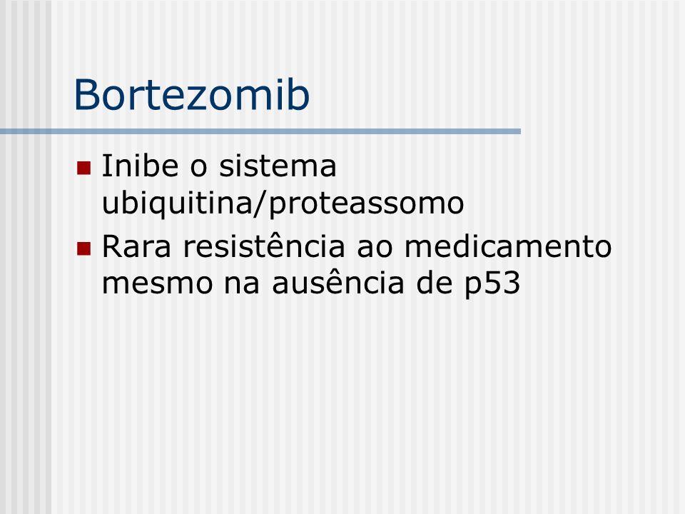 Bortezomib Inibe o sistema ubiquitina/proteassomo