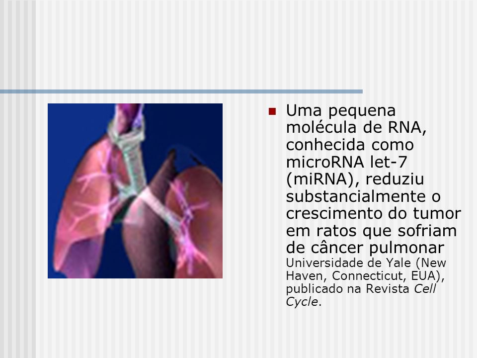 Uma pequena molécula de RNA, conhecida como microRNA let-7 (miRNA), reduziu substancialmente o crescimento do tumor em ratos que sofriam de câncer pulmonar Universidade de Yale (New Haven, Connecticut, EUA), publicado na Revista Cell Cycle.