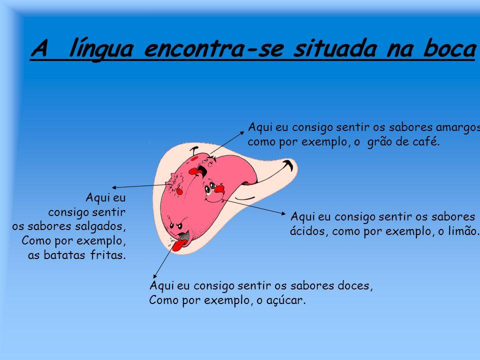 A língua encontra-se situada na boca
