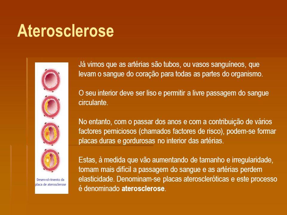 Aterosclerose Já vimos que as artérias são tubos, ou vasos sanguíneos, que levam o sangue do coração para todas as partes do organismo.