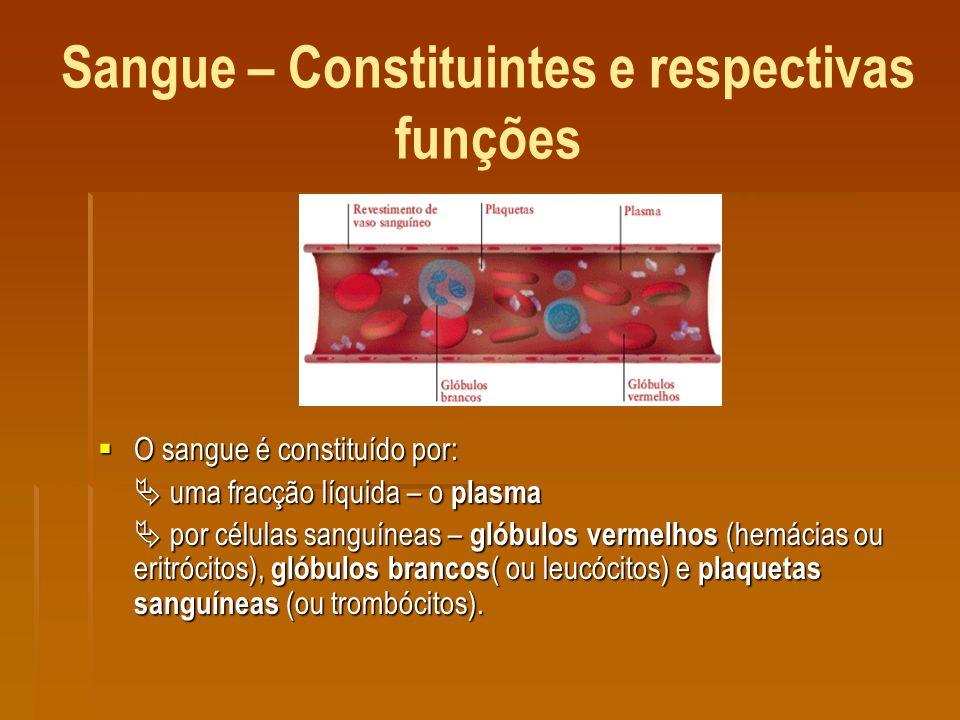Sangue – Constituintes e respectivas funções