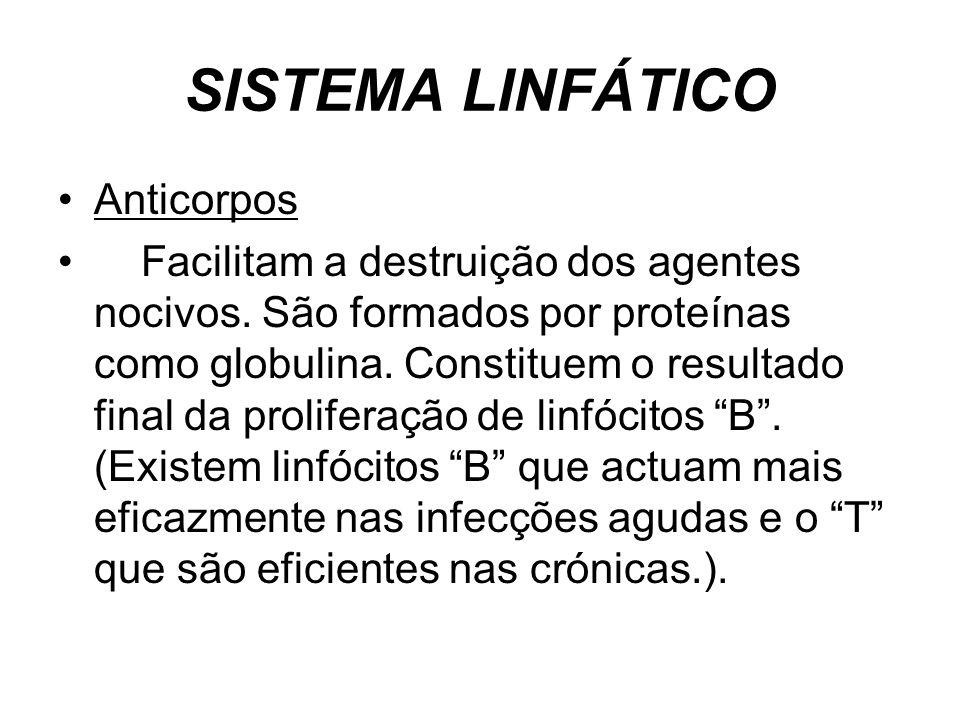 SISTEMA LINFÁTICO Anticorpos