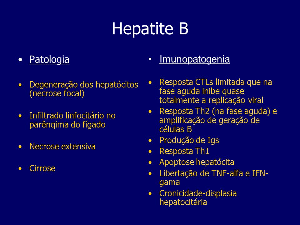 Hepatite B Patologia Imunopatogenia
