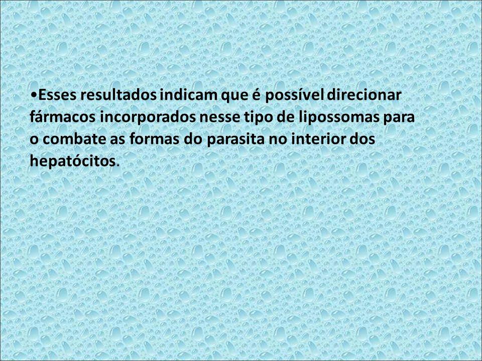 Esses resultados indicam que é possível direcionar fármacos incorporados nesse tipo de lipossomas para o combate as formas do parasita no interior dos hepatócitos.