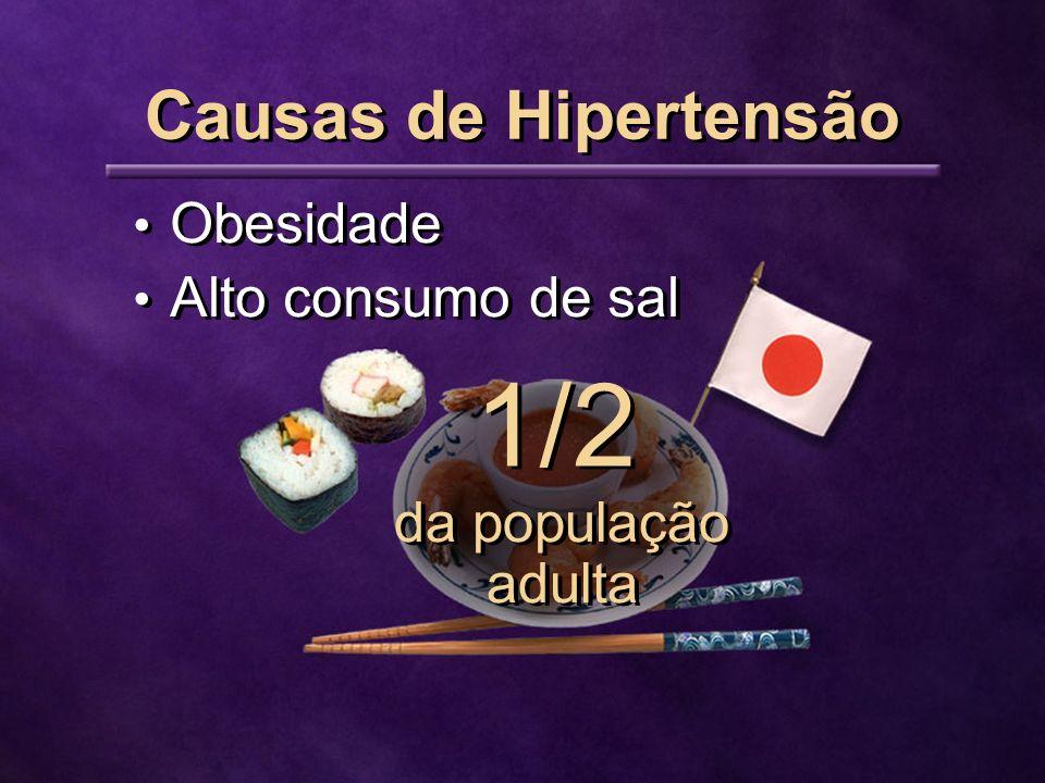 1/2 Causas de Hipertensão Obesidade Alto consumo de sal