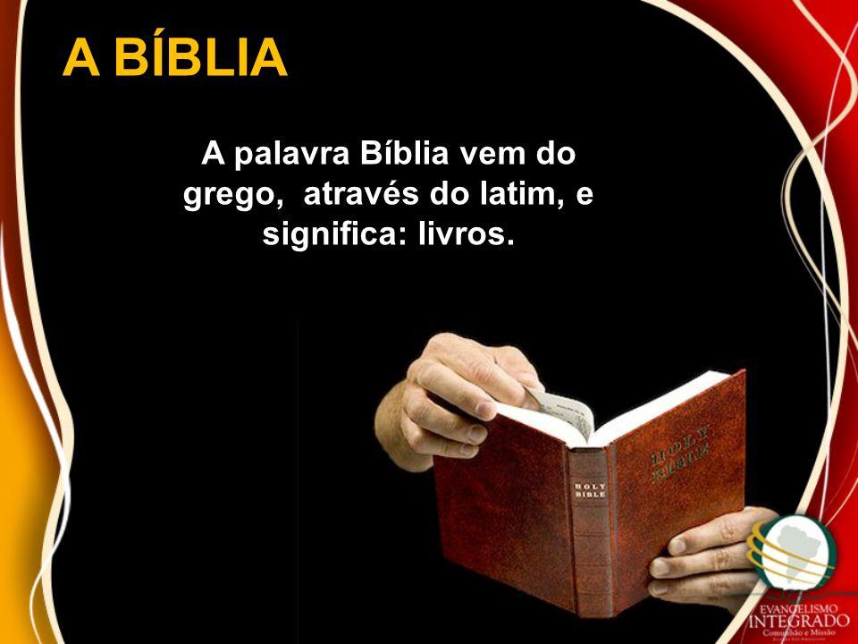 A palavra Bíblia vem do grego, através do latim, e significa: livros.