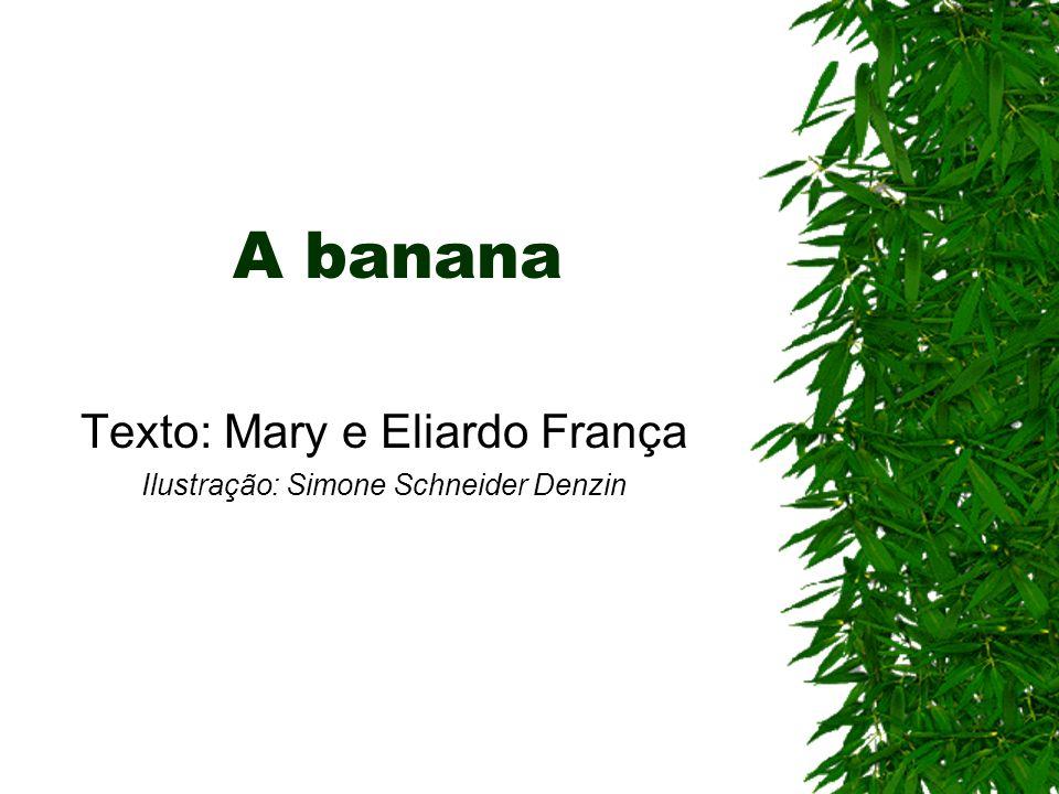 Texto: Mary e Eliardo França Ilustração: Simone Schneider Denzin
