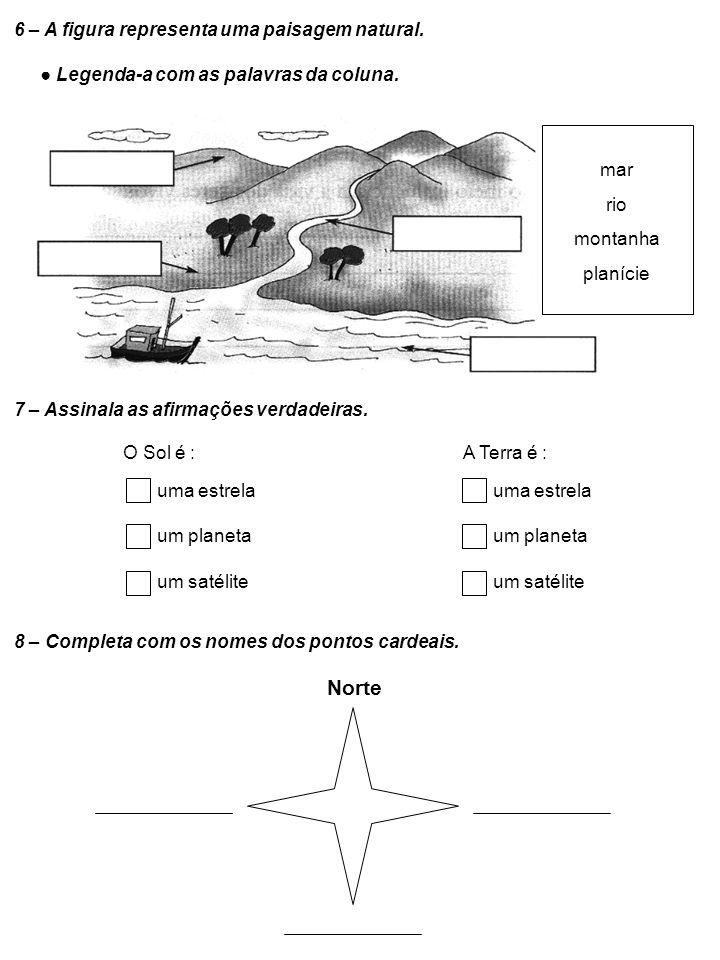 Norte 6 – A figura representa uma paisagem natural.