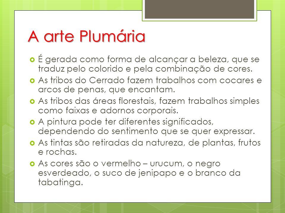 A arte Plumária É gerada como forma de alcançar a beleza, que se traduz pelo colorido e pela combinação de cores.