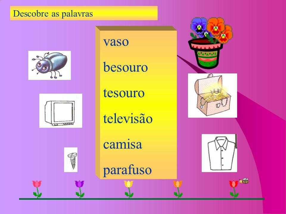 Descobre as palavras vaso besouro tesouro televisão camisa parafuso