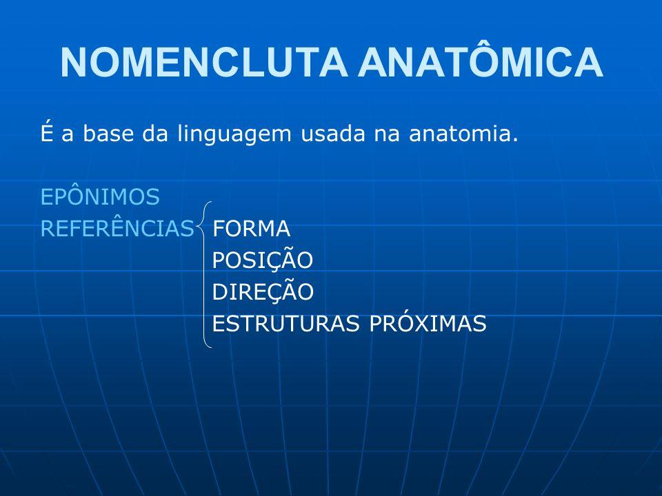 NOMENCLUTA ANATÔMICA É a base da linguagem usada na anatomia. EPÔNIMOS