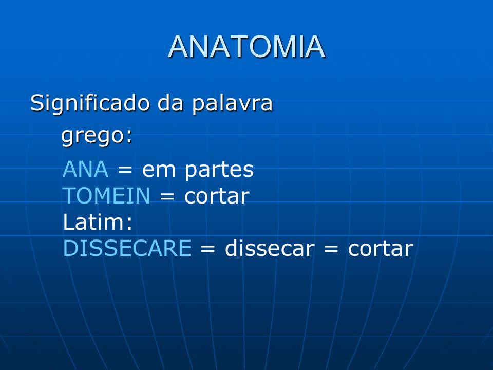 ANATOMIA Significado da palavra grego: ANA = em partes TOMEIN = cortar