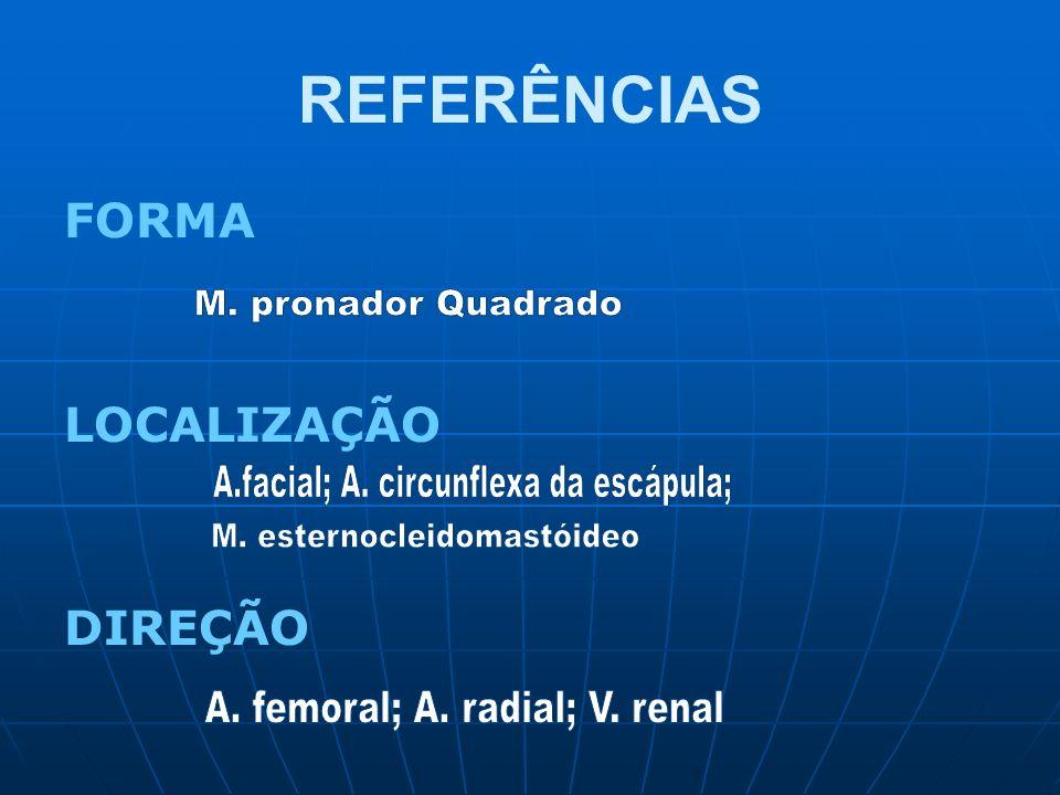 REFERÊNCIAS M. pronador Quadrado A.facial; A. circunflexa da escápula;