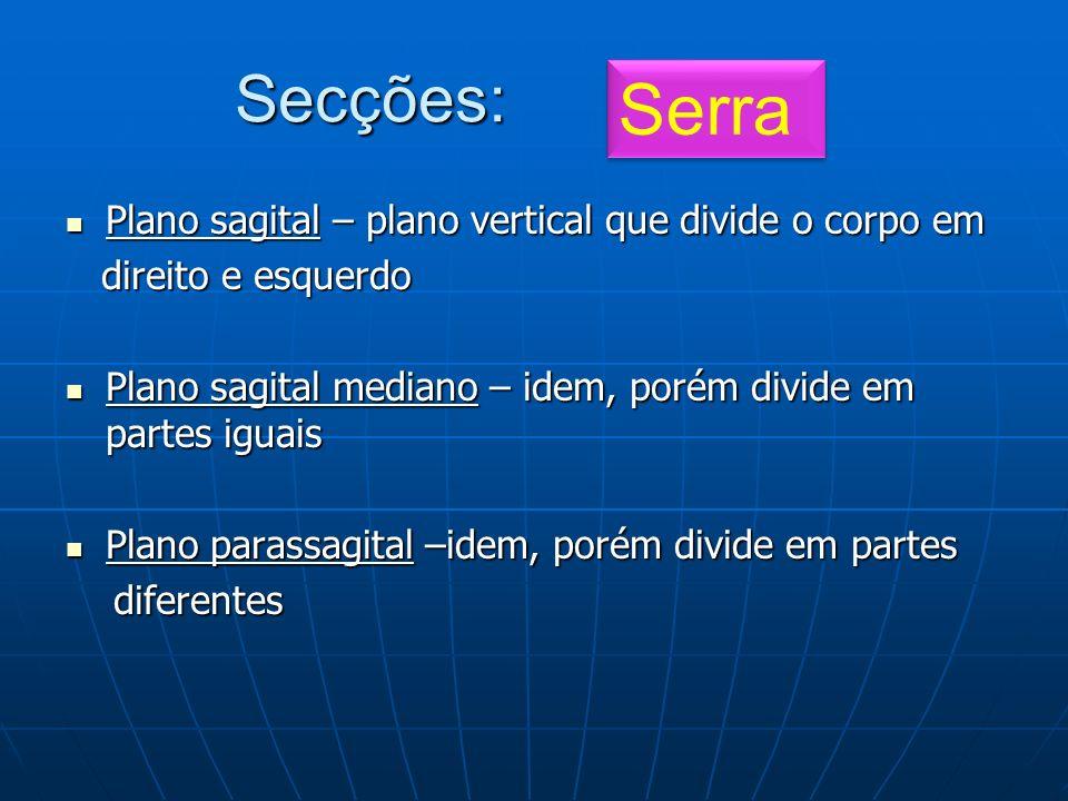 Serra Secções: Plano sagital – plano vertical que divide o corpo em