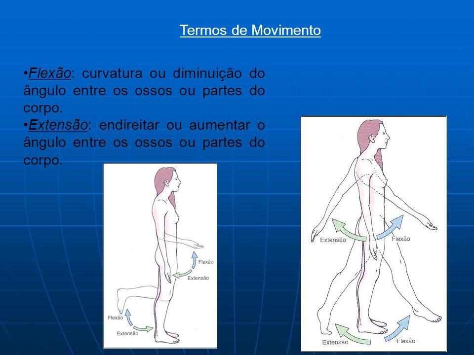 Termos de Movimento Flexão: curvatura ou diminuição do ângulo entre os ossos ou partes do corpo.