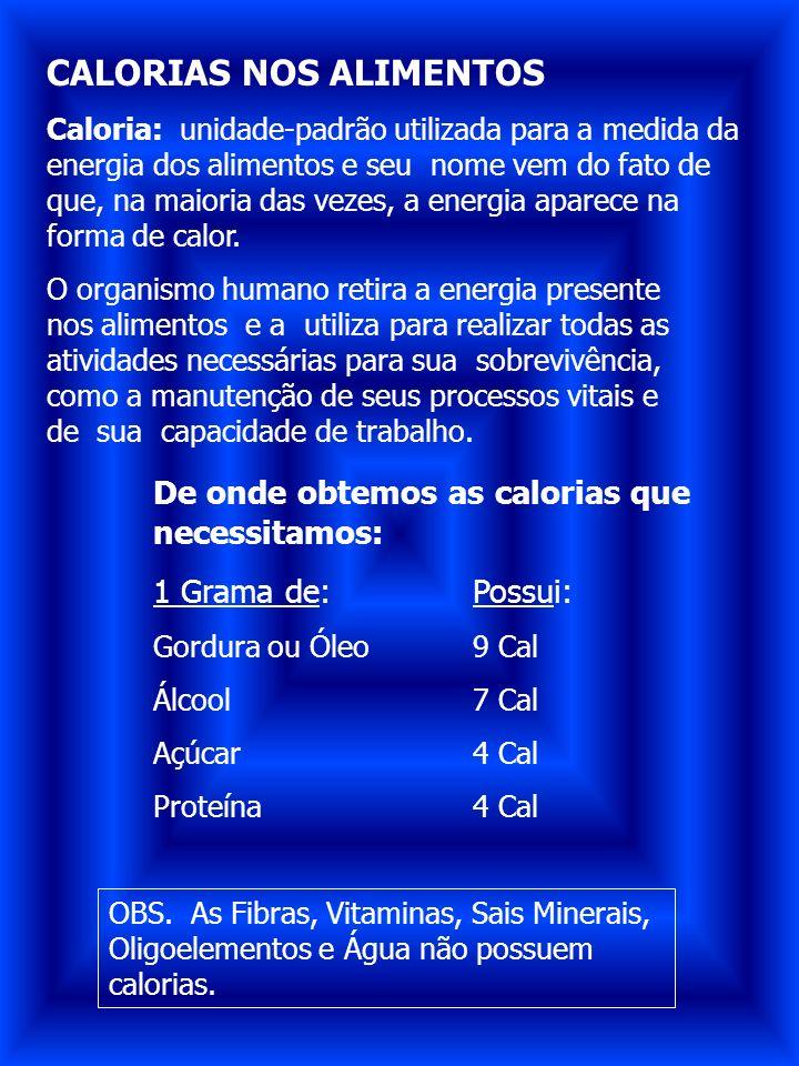 CALORIAS NOS ALIMENTOS