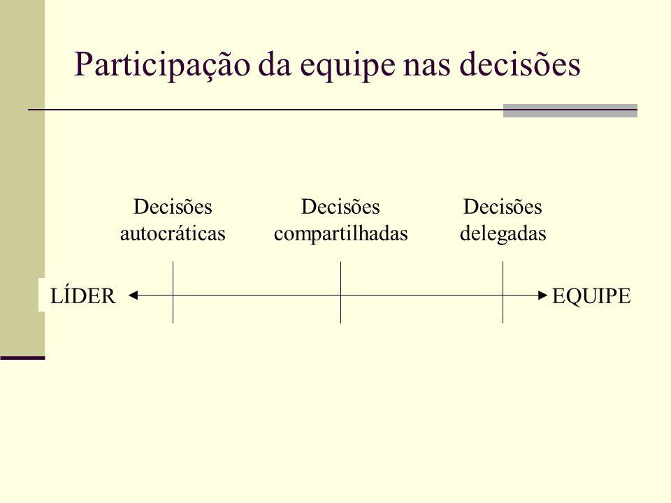 Participação da equipe nas decisões