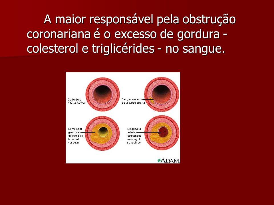 A maior responsável pela obstrução coronariana é o excesso de gordura - colesterol e triglicérides - no sangue.