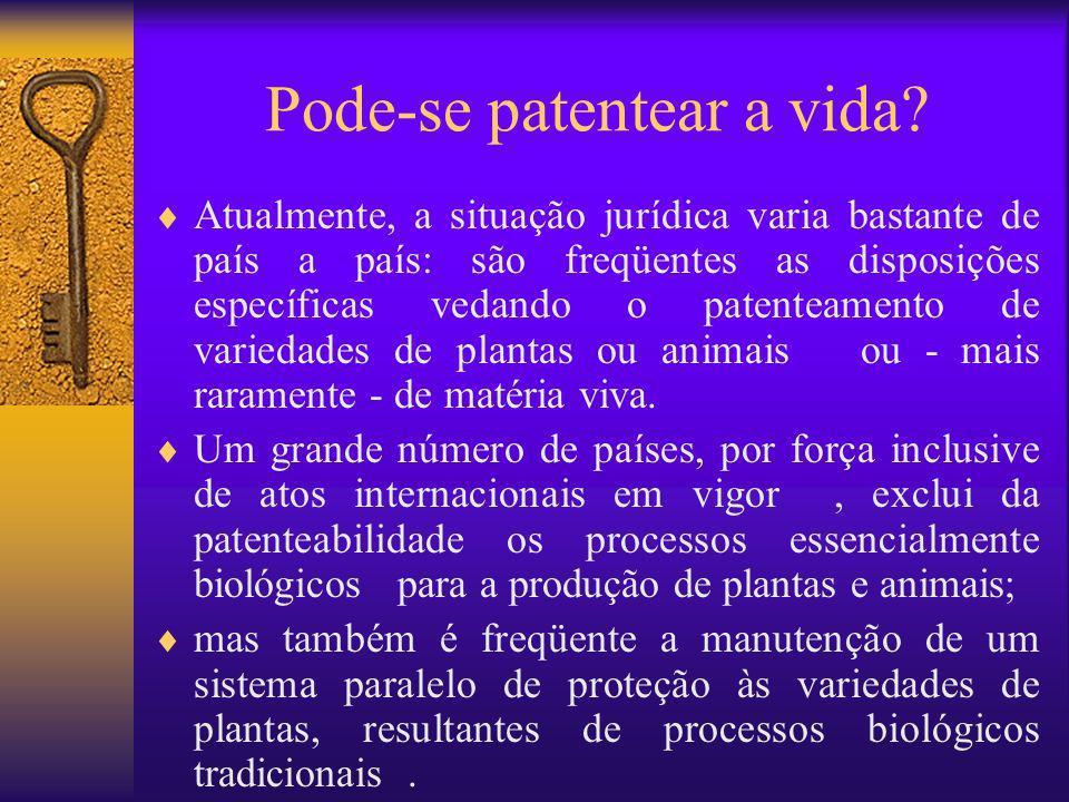 Pode-se patentear a vida