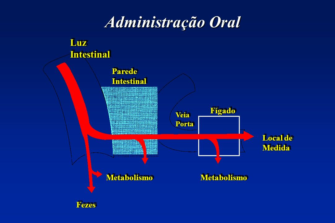 Administração Oral Luz Intestinal Parede Intestinal Fígado