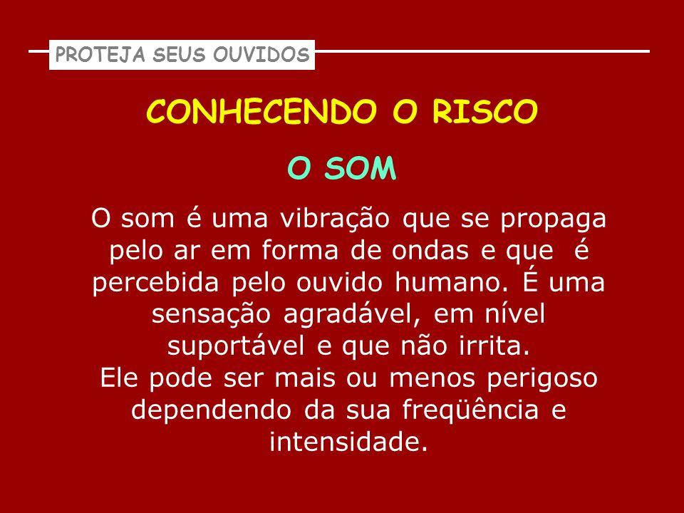 CONHECENDO O RISCO O SOM