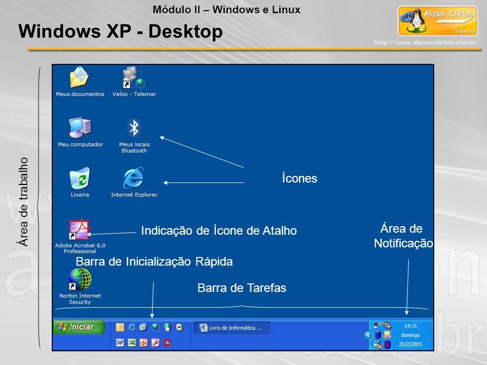 Windows XP - Desktop Ícones Área de trabalho Área de