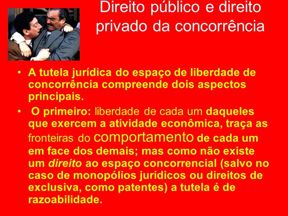 Direito público e direito privado da concorrência