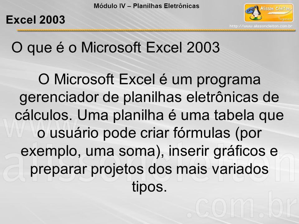 O que é o Microsoft Excel 2003
