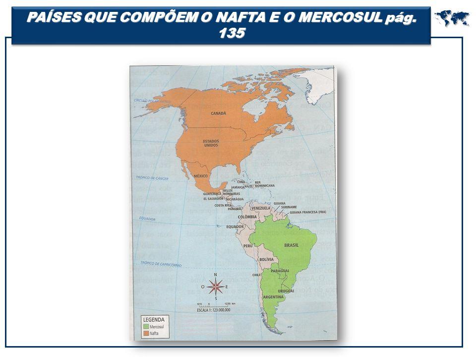 PAÍSES QUE COMPÕEM O NAFTA E O MERCOSUL pág. 135