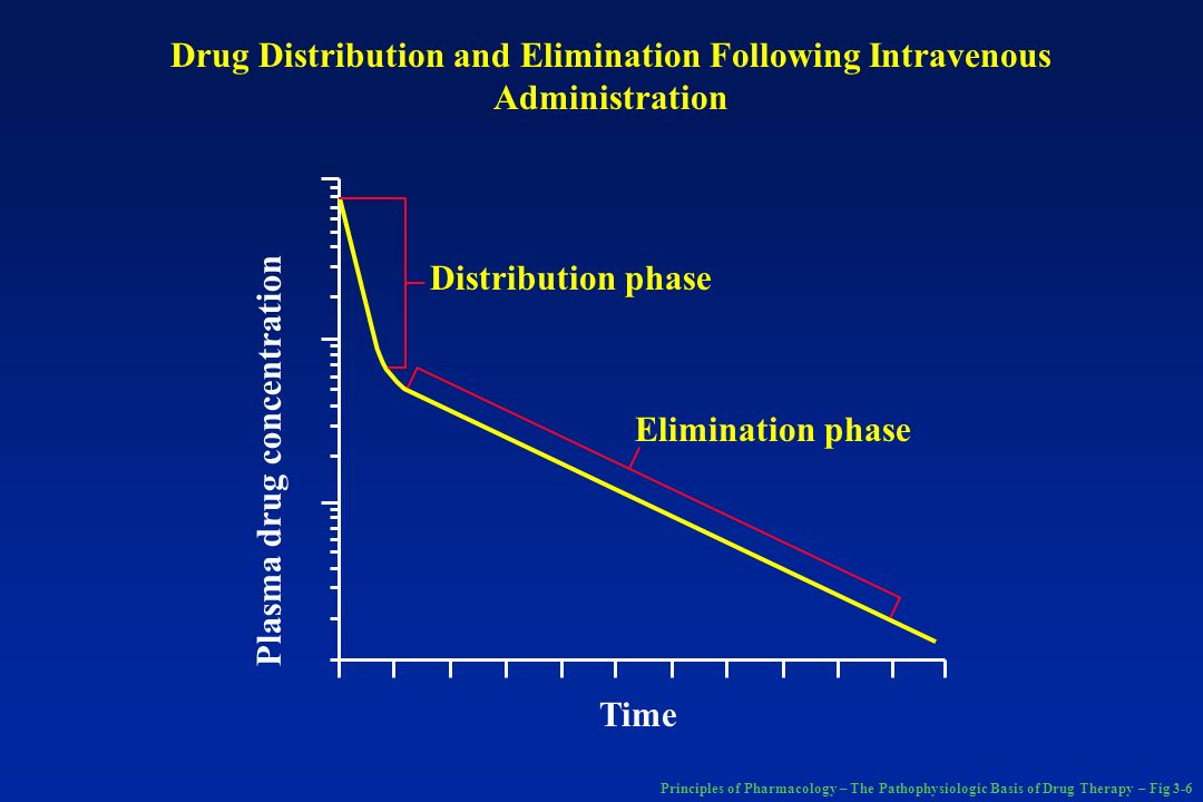 Drug Distribution and Elimination Following Intravenous Administration