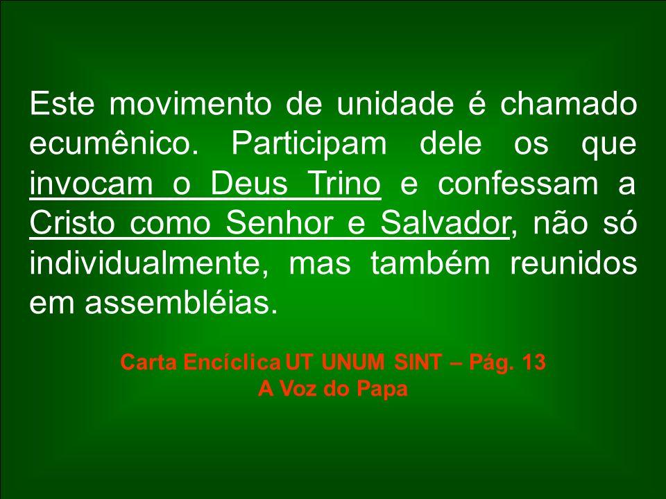 Carta Encíclica UT UNUM SINT – Pág. 13