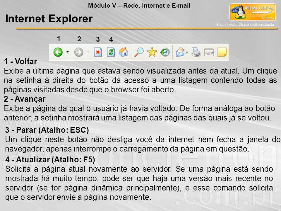 Internet Explorer 1 - Voltar