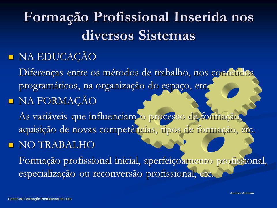 Formação Profissional Inserida nos diversos Sistemas
