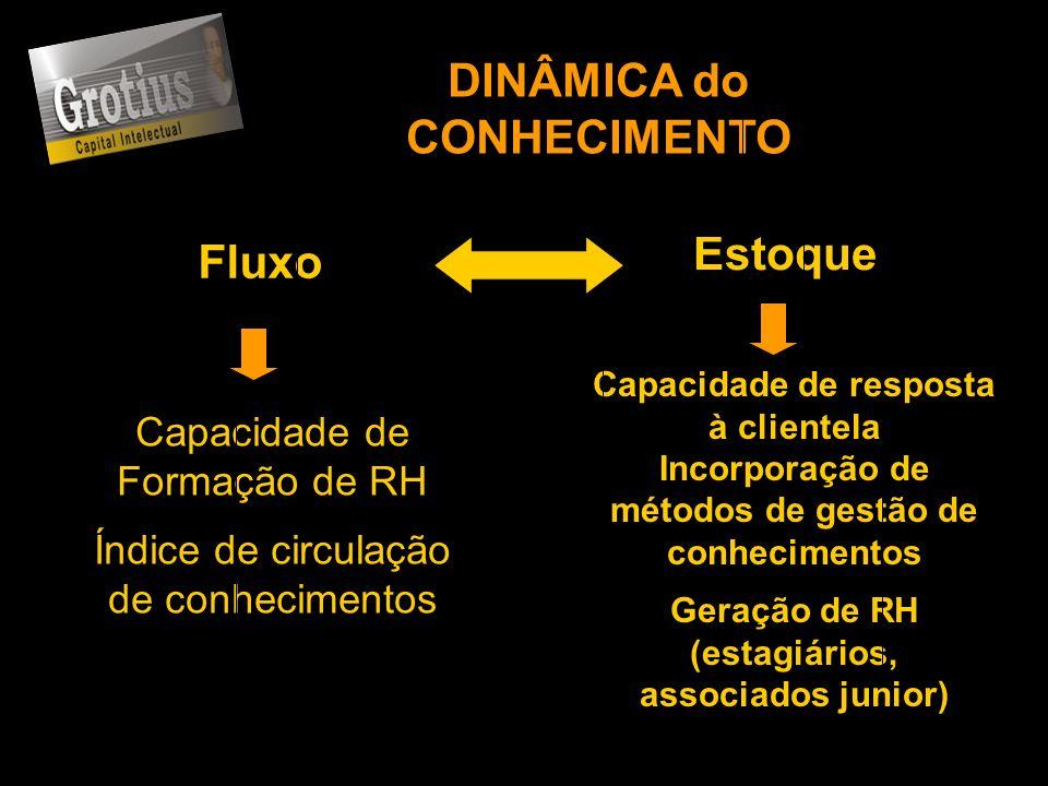 DINÂMICA do CONHECIMENTO Estoque Fluxo