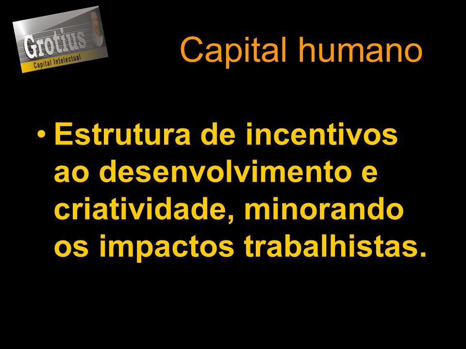 Capital humano Estrutura de incentivos ao desenvolvimento e criatividade, minorando os impactos trabalhistas.