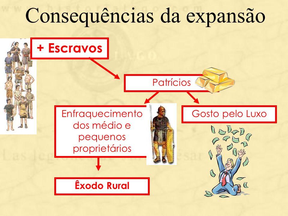 Consequências da expansão