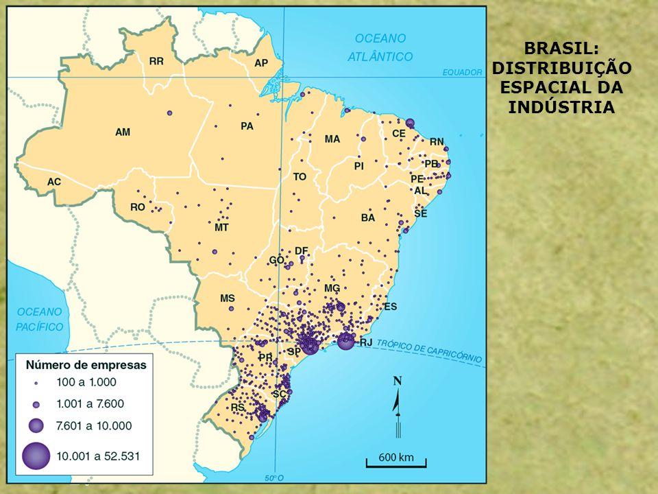BRASIL: DISTRIBUIÇÃO ESPACIAL DA INDÚSTRIA