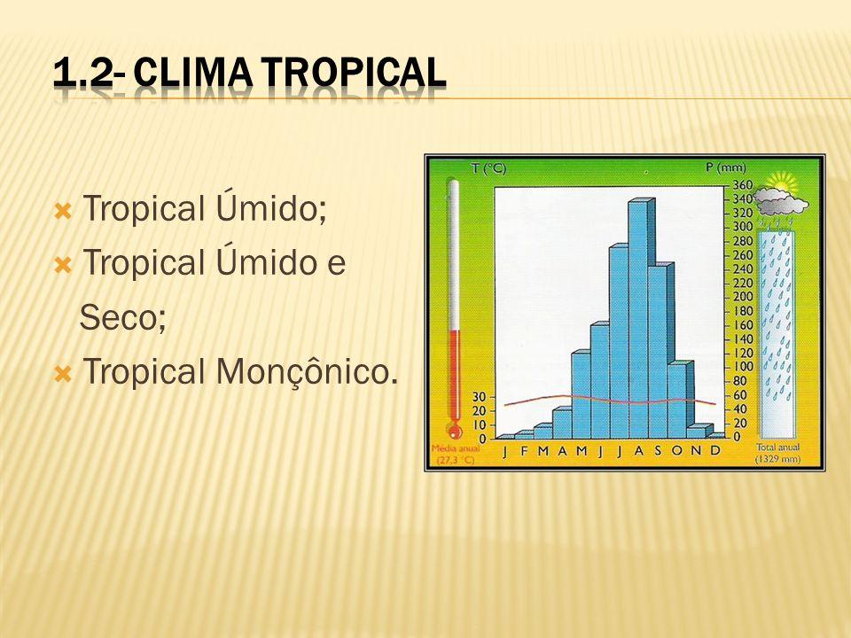 1.2- Clima Tropical Tropical Úmido; Tropical Úmido e Seco;