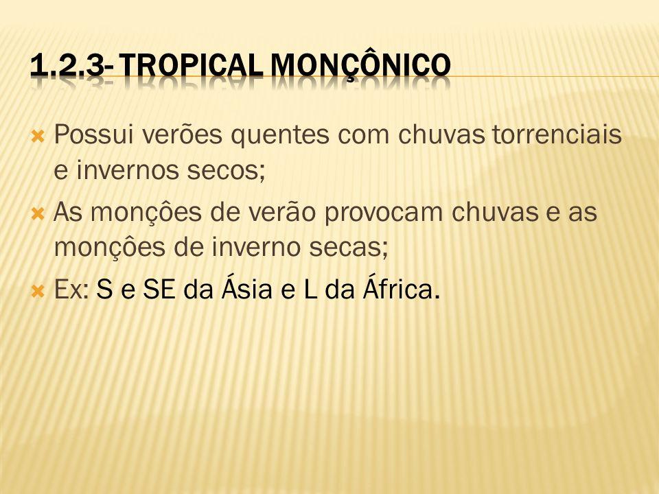 1.2.3- Tropical Monçônico Possui verões quentes com chuvas torrenciais e invernos secos;