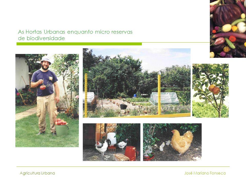 As Hortas Urbanas enquanto micro reservas de biodiversidade