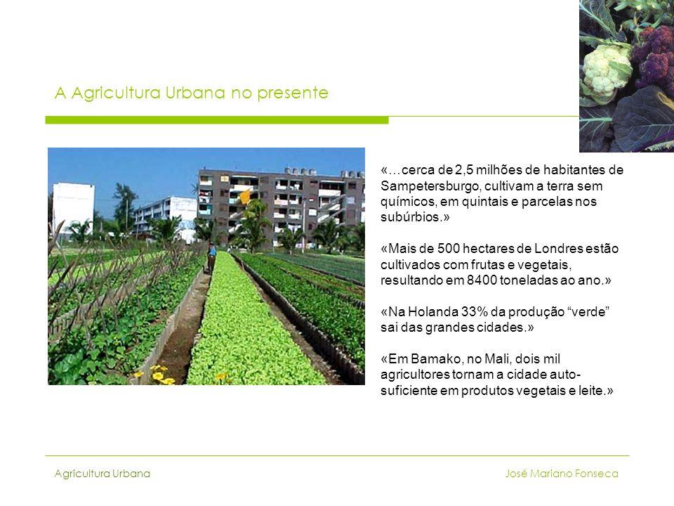A Agricultura Urbana no presente