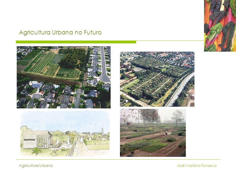 Agricultura Urbana no Futuro