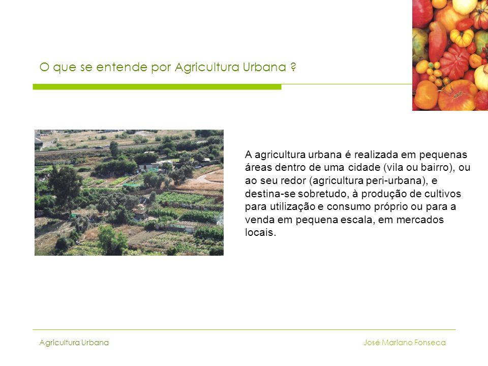 O que se entende por Agricultura Urbana