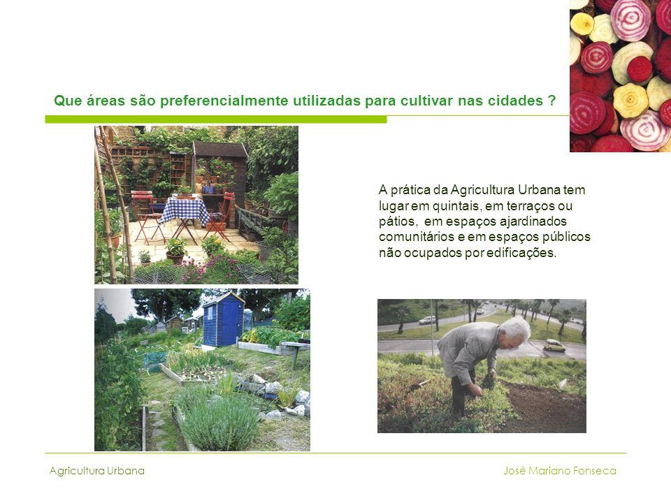 Que áreas são preferencialmente utilizadas para cultivar nas cidades